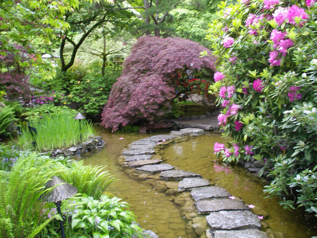 imagens jardim japones : imagens jardim japones:Beautiful Garden Paths with Water